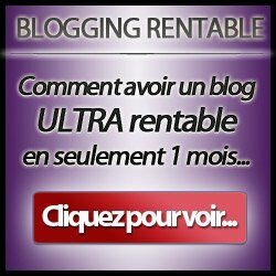 Blogging rentable par Sylvain Wealth
