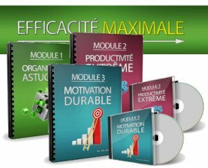 Efficacité maximale par Sylvain Wealth : formation en motivation, productivité et organisation