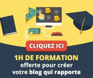 Theophile eliet offre 1h de formation gratuite sur bloginfluent.fr