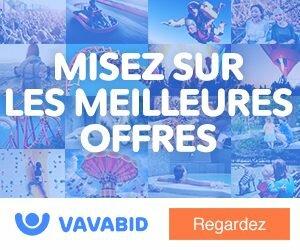 Vavabid : avis et témoignage pour miser aux enchères sur les meilleures offres