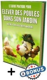 élever des poules dans son jardin : avis livre de Amélie Toncas